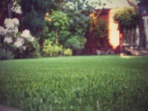 Install Artificial Grass In Essex