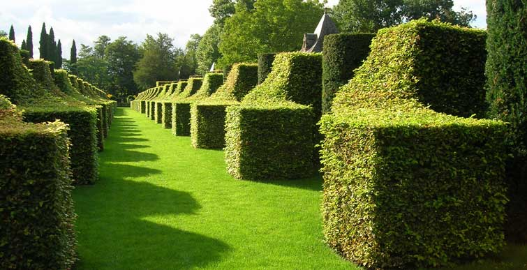 Garden Maintenance Services in Southend and Essex