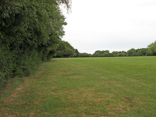 Garden Services in Basildon, Essex