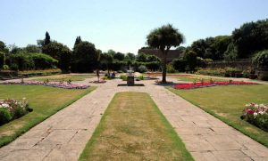 Garden Cleared and Maintained in Southend on Sea
